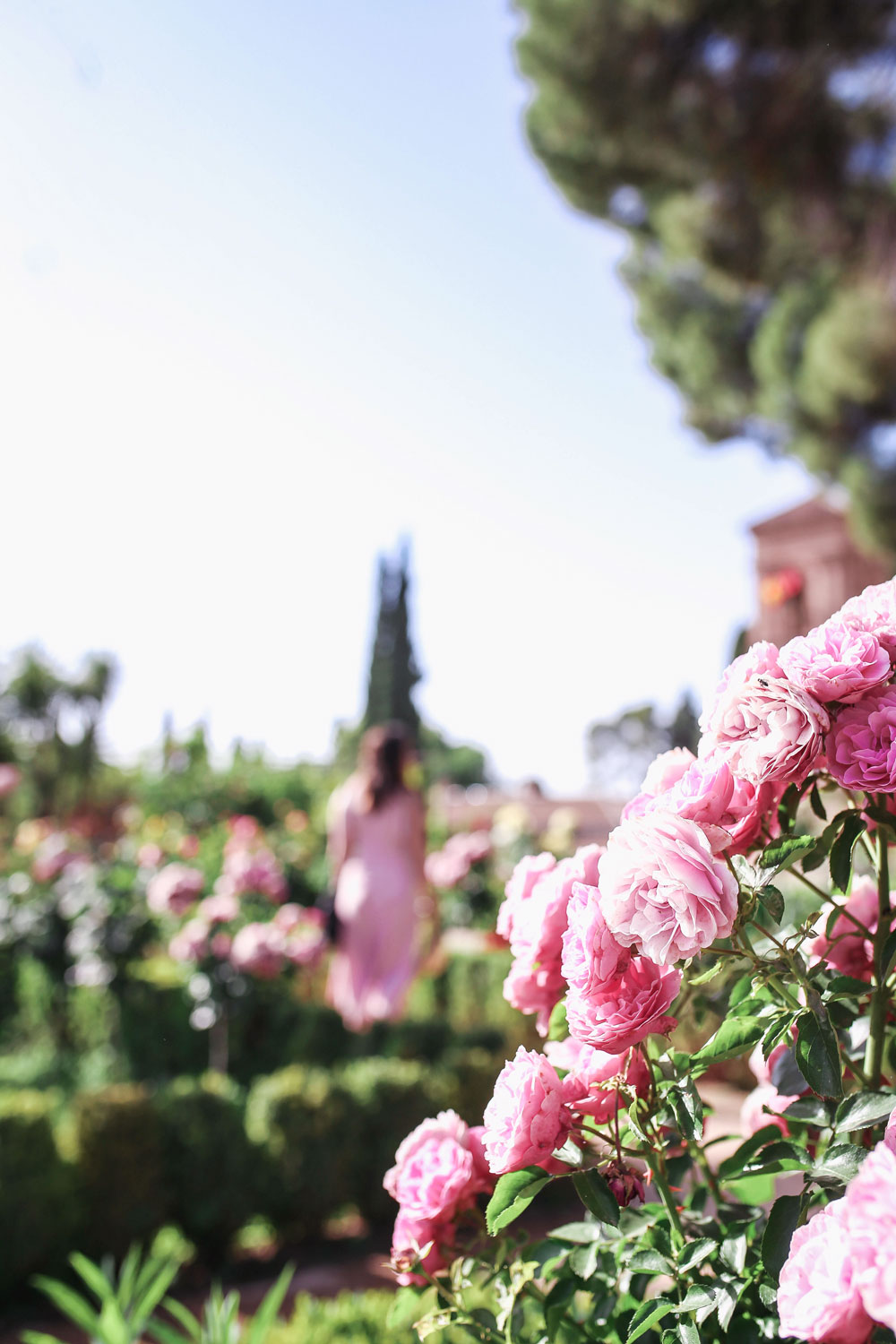 What to see at the Alhambra, Granada