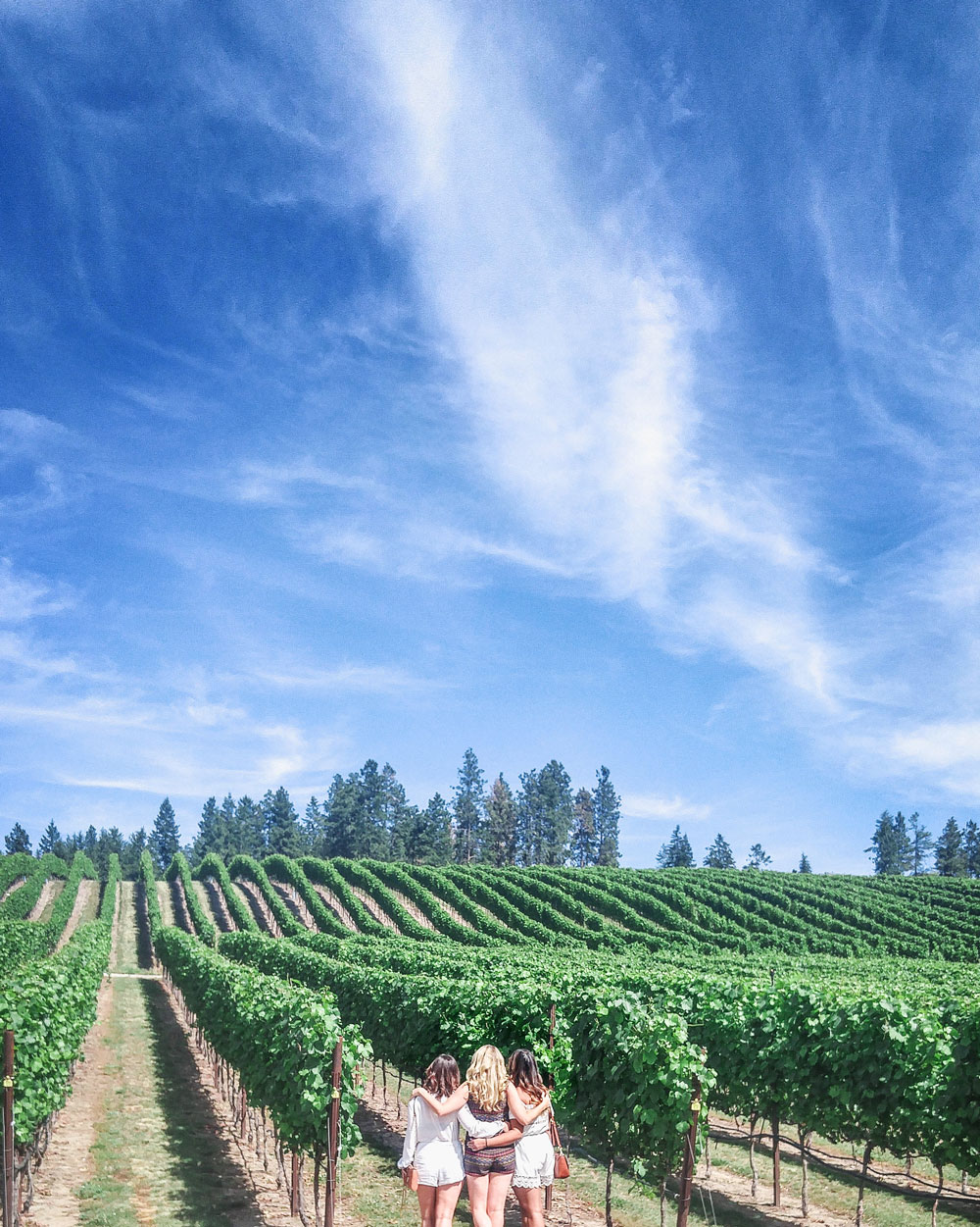 Winery tours in the okanagan shown by To Vogue or Bust