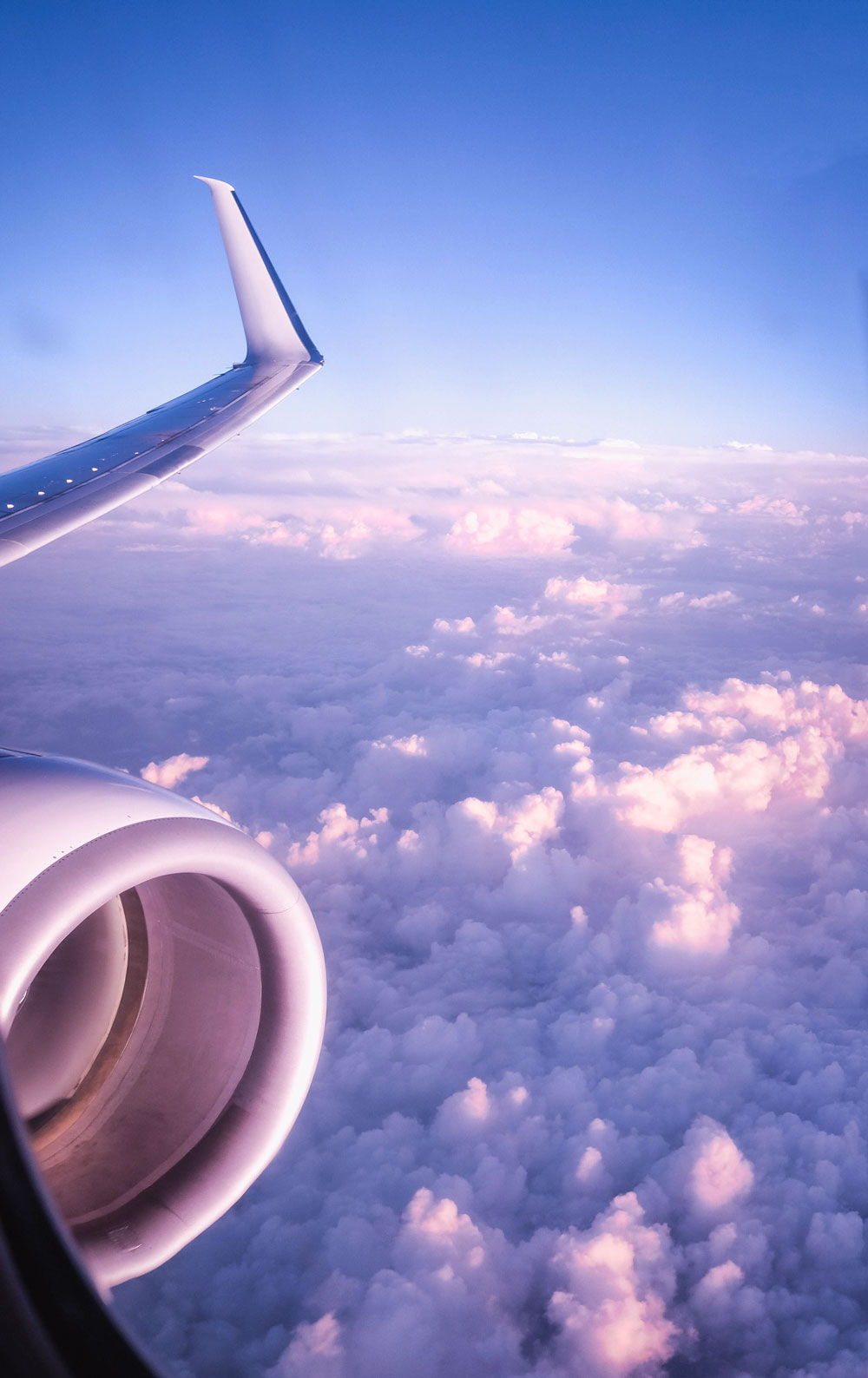 To Vogue or Bust air transat review