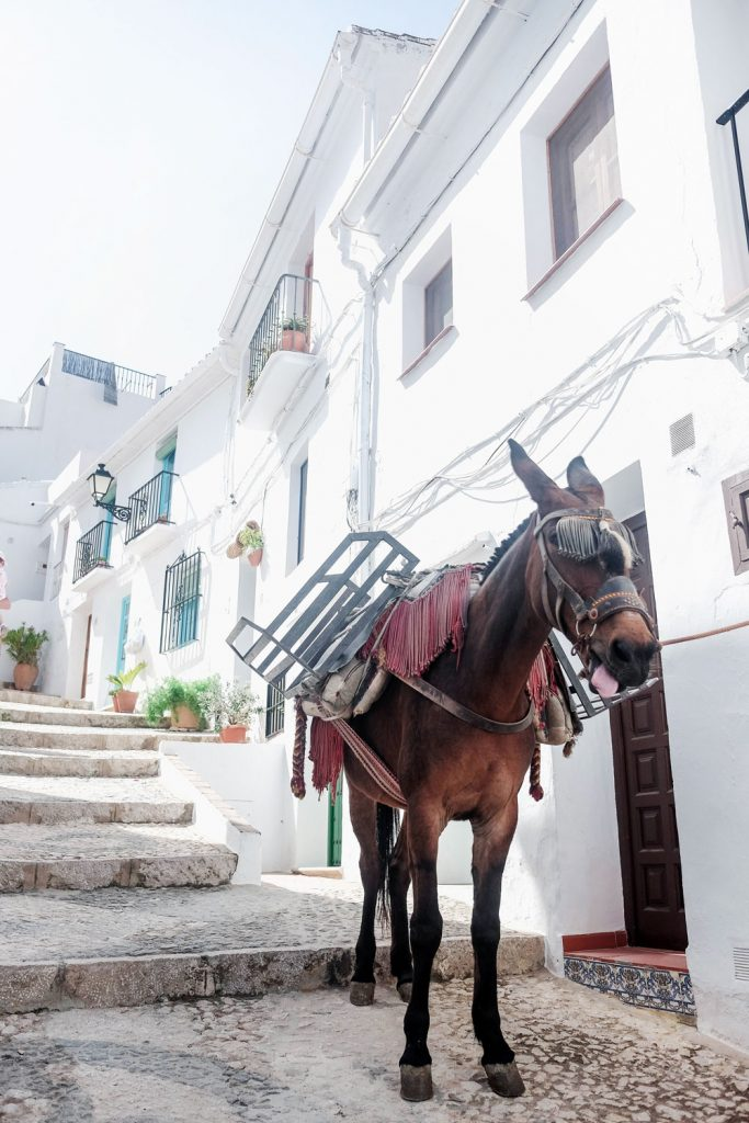 What to see in andalucia spain travel guie by To Vogue or Bust