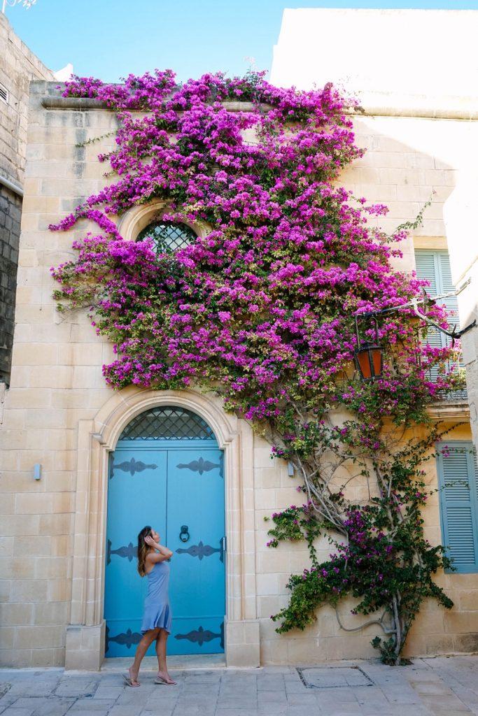 malta flower door by To Vogue or Bust