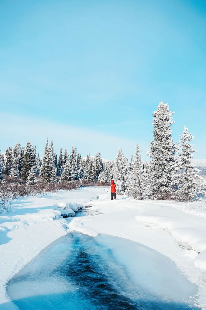 Yukon tours
