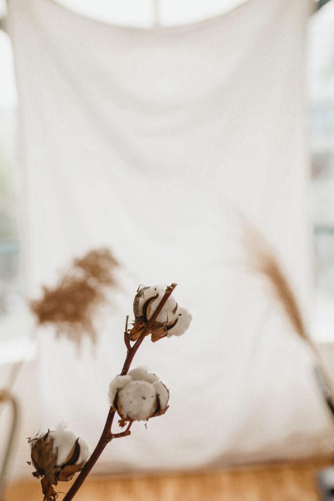 DDry floral arrangement